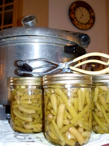 My grandmother's old pressure canner, my green beans