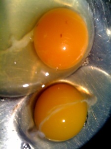 Can you tell which one is our egg and which is commercial?